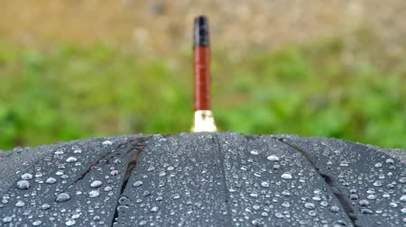 tecido : Large rain drops falling on black umbrella