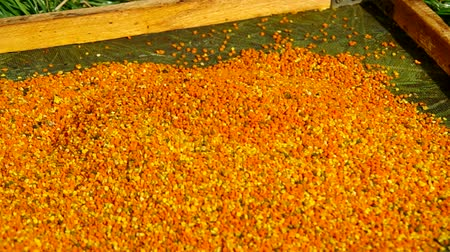 realeza : Fresh bee pollen