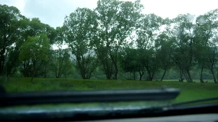 previously : Rain behind the window the car, the car windscreen-wiper Stock Footage
