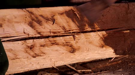 hatchet : Cutting an old wooden beam with an ax that is attacked by larvae Stock Footage