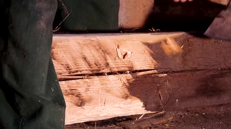 bogár : Cutting an old wooden beam with an ax that is attacked by larvae Stock mozgókép