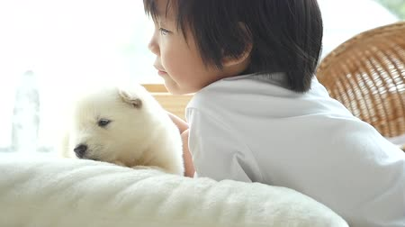 сибирский : Cute asian child playing with siberian husky puppy at home