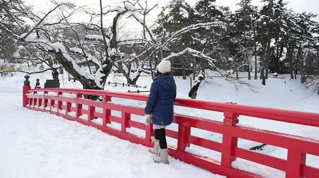 korejština : Portrait of beautiful Asian girl on red bridge at Hirosaki Castle in Aomori, Japan