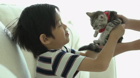 Asian mother giving a kitten to her son slow motion Wideo