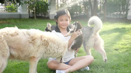 evcil hayvanlar : Happy Asian children playing with siberian husky dog in the garden slow motion Stok Video