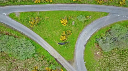 argyll : Aerial view of the scottish highlands with single track road and turnout junction