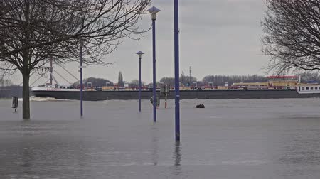 vodoznak : Duisburg  Germany - January 08 2017 : The vessel Bacchus is passing the flooded promenade Dostupné videozáznamy