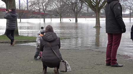 filigran : Duisburg  Germany - January 08 2017 : Tourists surprised by the river Rhine flooding the promenade