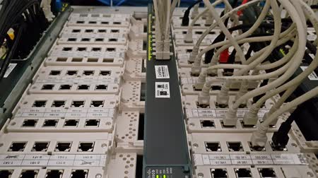 cabling : Leverkusen  Germany - September 06 2018 : Industrial ethernet network switch is working while green light are flashing Stock Footage