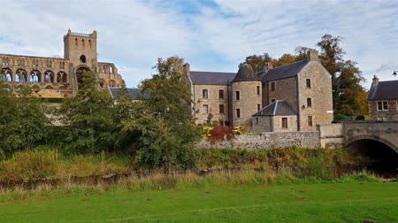 taş işçiliği : Jedburgh  Scotland - October 10 2018 : Jedburgh abbey ruins are standing in the middle of the town Stok Video