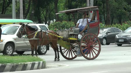 sáně : Manila, Philippines, may 7, 2017: the Trooper with the horse waits for customers
