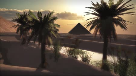 vaha : Pyramid by the oasis
