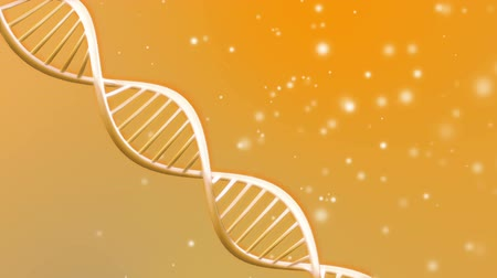 chemistry : Background animation of looping animated dna molecule Stock Footage