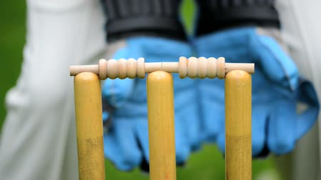 wicket : wicket keeper with gloves