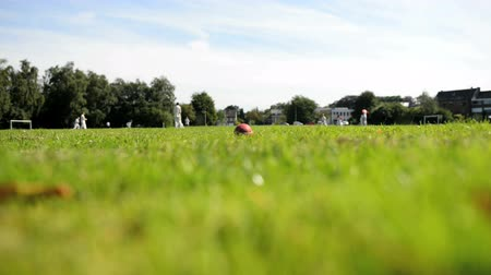 kriket : Cricket match in Ghent, Belgium