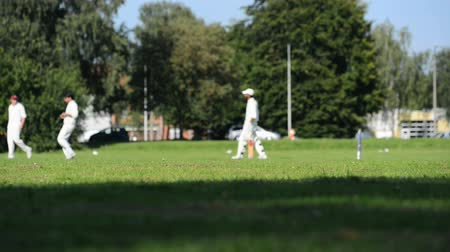 kriket : cricket match in Belgium  Stok Video