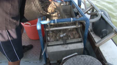 sieving : Filling the shrimp sieving machine Stock Footage