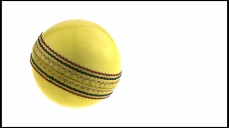 kriket : Isolated rotating cricket ball