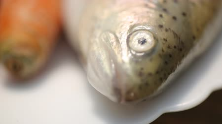 eye piece : trout and carrots closeup
