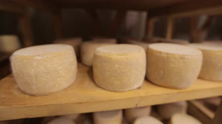 parmigiano : Parmesan matures on wooden and metal shelves Stock Footage