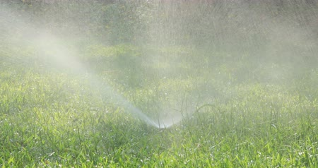 grassplot : Automatic sprinklers watering grass