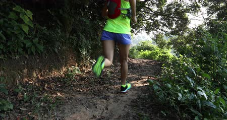 red shoes : Young woman trail runner running on tropical forest trail in the morning