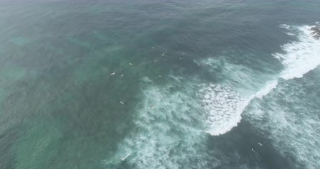 Aerial footage,Top view from drone of surfers paddling for catching waves during surfing in the indian ocean,4k Stock Footage