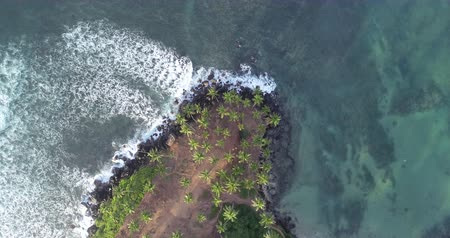 Aerial view of island landscape with coconut trees on tropical beach drone looking down rotation 4k Stock Footage