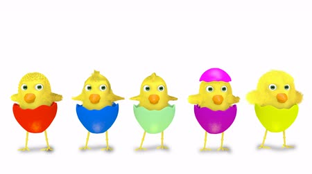 humor : dancing group of yellow chicks isolated on white background - Easter theme Vídeos