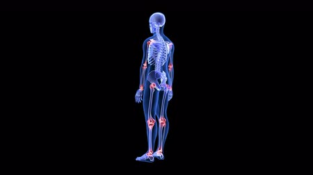 cuidados com o corpo : Joint Pain. Blue Human Anatomy Body 3D Scan render - rotating seamless loop