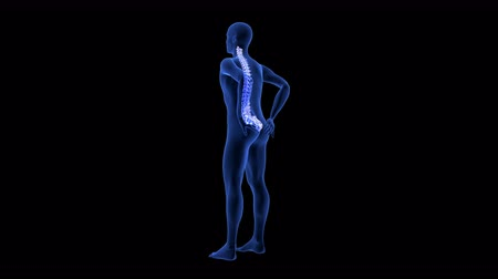 Spine Pain. Blue Human Anatomy Body 3D scan render on black background - seamless loop Стоковые видеозаписи