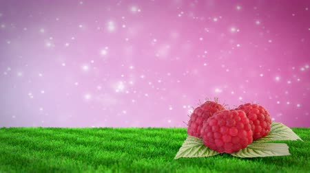 raspberries on grass field with loopable bokeh background.