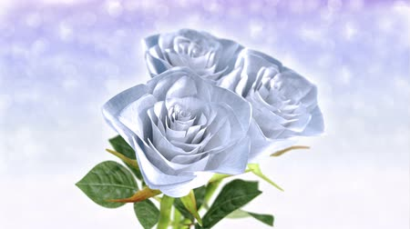 rotating white roses, wedding theme - 3D render. seamless loop