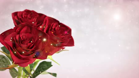 празднование : rotating red roses, wedding, birthday, st. valentines theme - 3D render. seamless loop