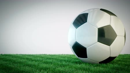 futball labda : Rotating glossy soccer ball on grass field - seamless loop