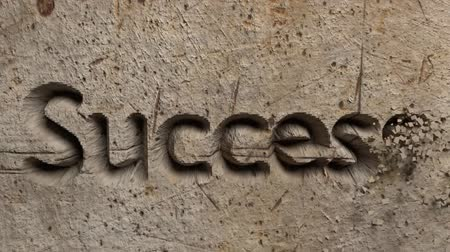 contentamento : Success word carved in stone wall animation