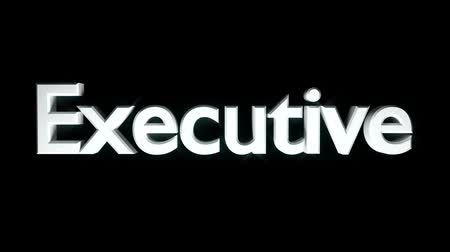 Executive coaching animation with streaking text in gray Stock mozgókép