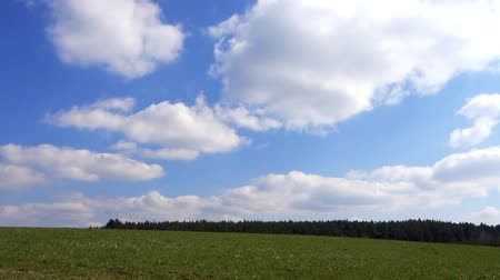 mavi gök : Green pasture and blue sky with white clouds - fast motion