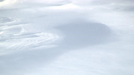 monte de neve : Snowdrift Sculpted by Wind Driven Ice Crystals
