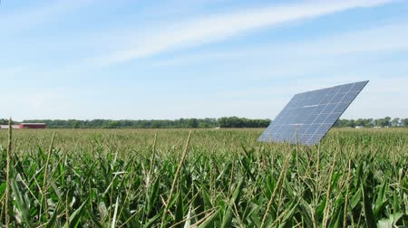 солнечный : Time Lapse Solar Panel Tracking Sun in Corn Field Стоковые видеозаписи