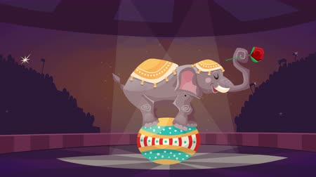 circusdieren : Circus cartoon video animatie footage
