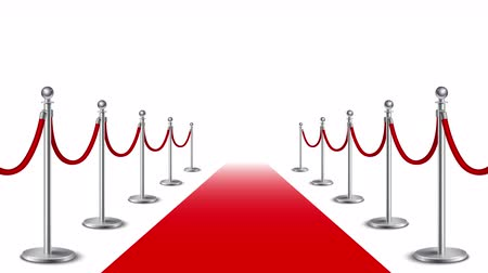 Red carpet ceremonial vip event moving forward available in 4k UHD FullHD and HD 3d loopable realistic video footage