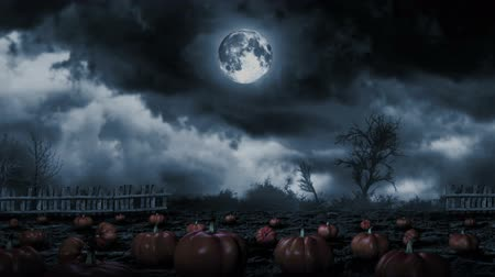fullmoon : This loop video shows phantom pumpkins in teh ghostly light of the fullmoon