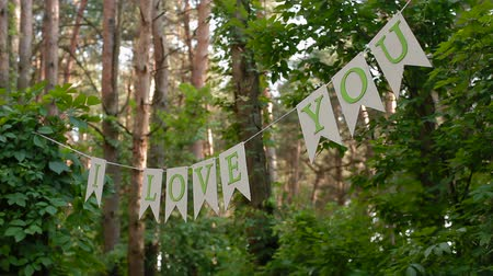 código : Letters on line between trees in the forest with the text I love you Stock Footage
