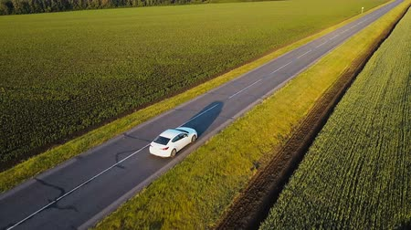 asphalt road : Aerial shot of green countryside and white car driving through. Drone follows vehicle driving though green nature farmland with sunset shining and making beautiful light.