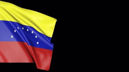 oficial : Waving flag of Venezuela. Background of the country of venezuelan. Stock Footage