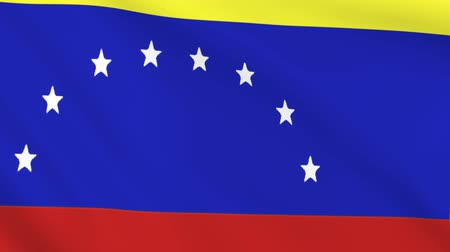 ensign : Waving flag of Venezuela. Background of the country of venezuelan. Stock Footage