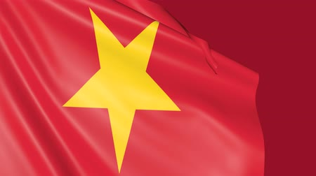 gurur : Flag of Vietnam. Animated Symbol of the country. Stok Video