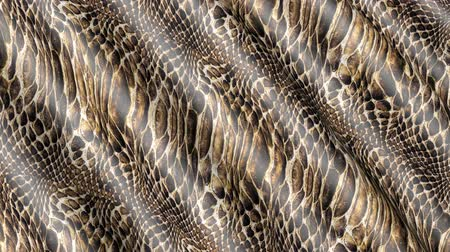 cobra : Waves of snake-colored fabric. Abstract 3D texture of the movement. Vídeos