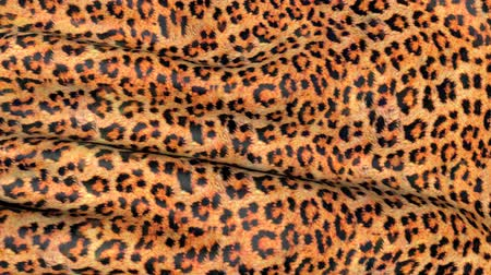 panter : Skin of a leopard in motion. Background of the canvas ripples.